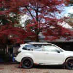 地方住みの方は、自分の持っている車を紹介する記事(動画)を作りましょう。