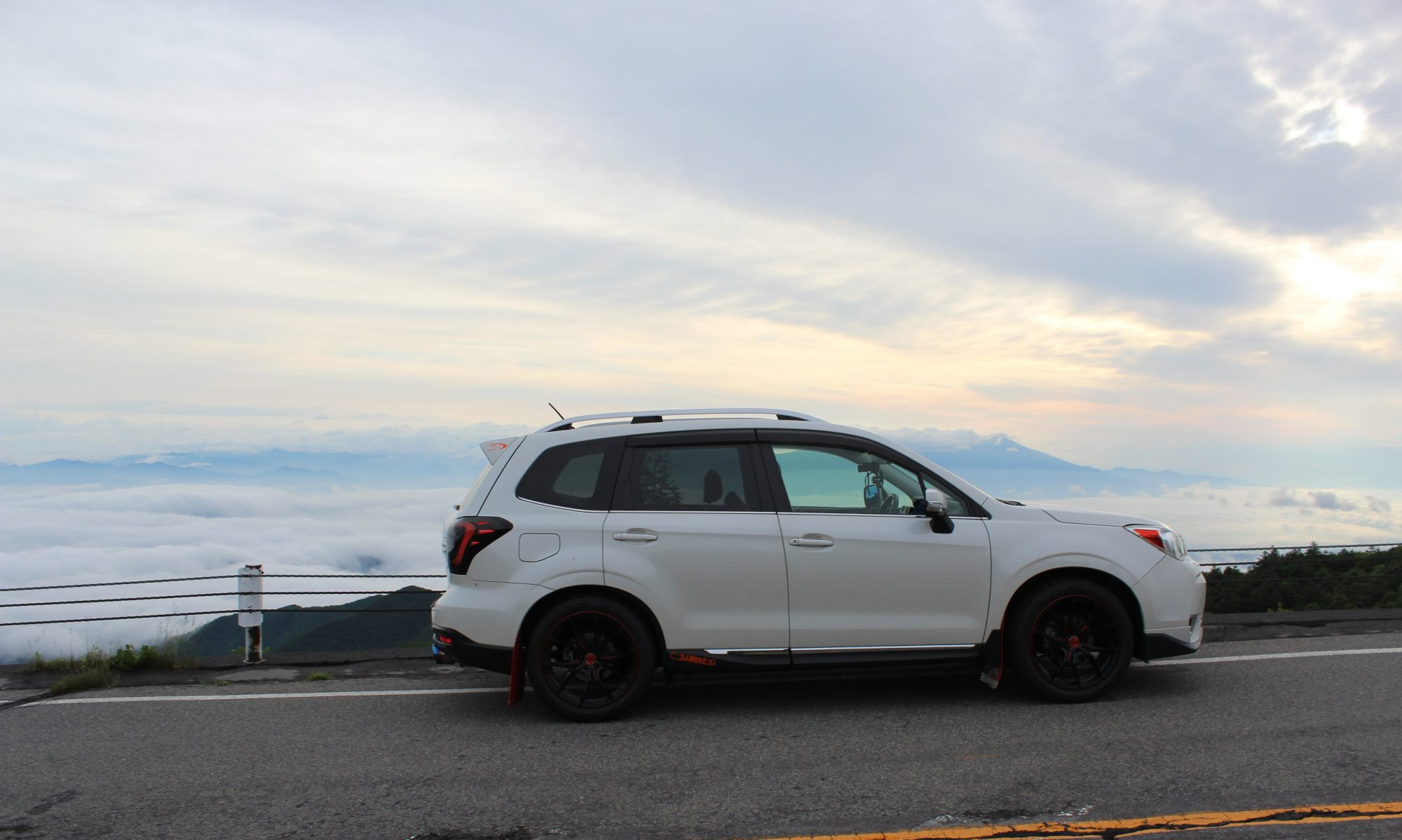 FORESTER LIFE BLOG