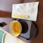 旅行に離乳食は持っていくべき?(乳児期)